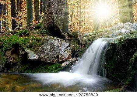 autumn creek in Czech republic