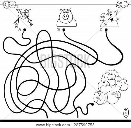 Path Maze With Pigs And Apples Color Book
