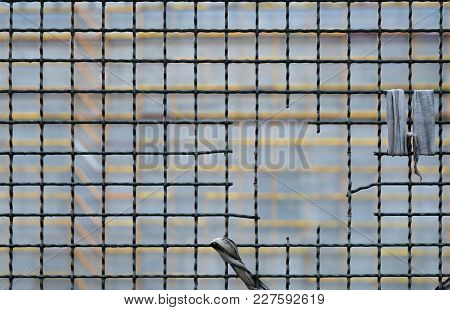 A Hole In The Grid Fence With Yellow Grid In The Background