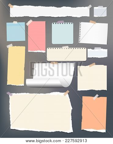 White And Colorful Torn, Lined, And Squared Note, Notebook Paper Stuck With Adhesive, Sticky Tape On