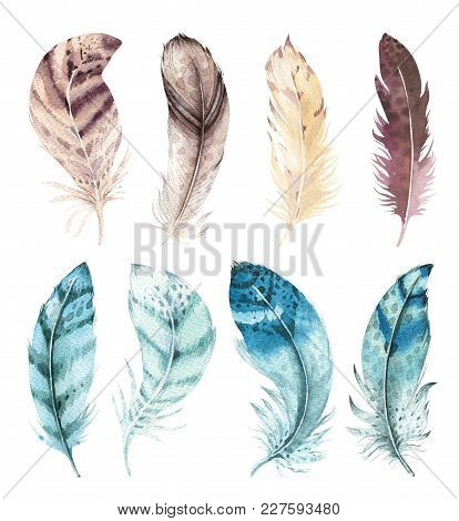 Hand Drawn Watercolor Vibrant Feather Set. Boho Style. Illustration Isolated On White. Bird Fly Desi