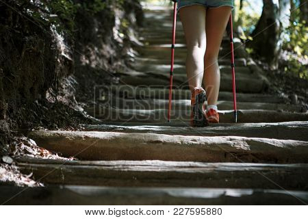 Woman with walking sticks on ladder of logs