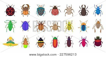 Bugs Icon Set. Cartoon Set Of Bugs Vector Icons For Web Design Isolated On White Background