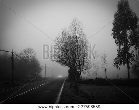 Car Driving On A Road Wrapped In Dense Fog, With Poor Visibility