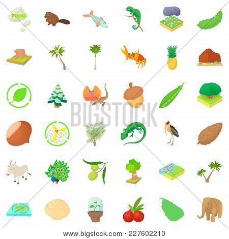 Natural Riches Icons Set. Cartoon Set Of 36 Natural Riches Vector Icons For Web Isolated On White Ba