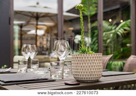 Close-up Of The Cutlery Of A Gourmet Restaurant Table With Greenery In The Background