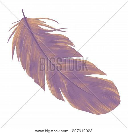 Feathers Hand Drawn Illustration. Element Of Boho Style Design. Bird Quill Isolated On White Backgro