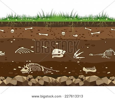 Soil With Dead Animals. Horizontal Seamless Earth Underground Surface With Dinosaur And Lizard Bones