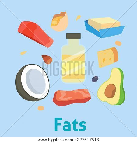 Fat Food Vector Healthy Diet Oil Avocado Or Fatty Fish And Nuts With Natural Omega3 Illustration Set