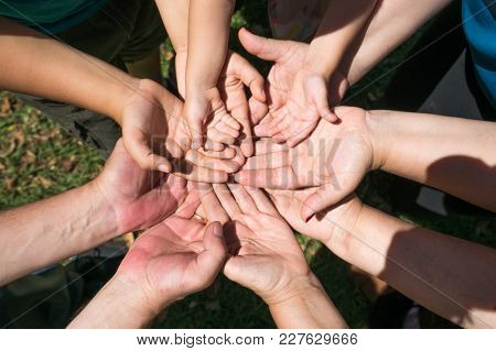 group of hands of different ages together