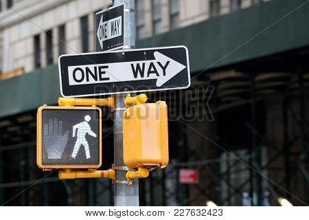One Way Road Sign Points On A New York City Street