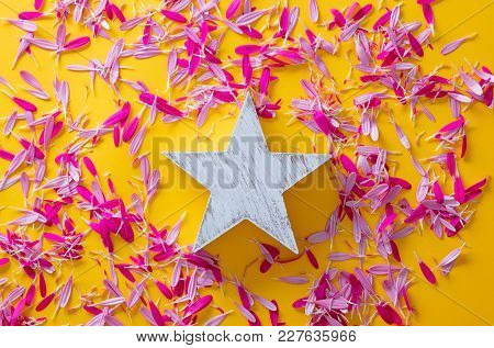 Pink And Purple Flower Petal And Star