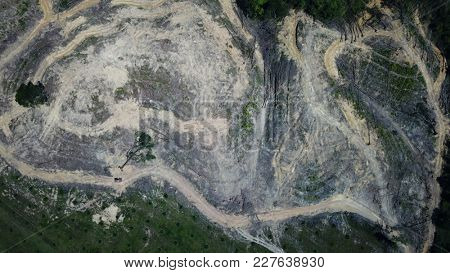 Deforestation. Logging of forest. Environmental destruction - rainforest destroyed to male way for oil palm plantation