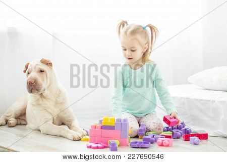 A Preschool Child Is Played With Toys In A Room With A Dog. The Concept Of Lifestyle, Childhood, Upb