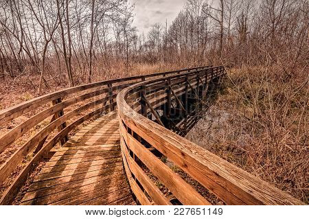 Wooden Footbridge For Hiking In Nature Park.