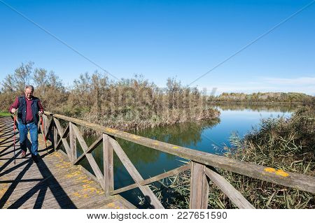 Hiker (60 Years Old) On A Wooden Footbridge On The River. Front View