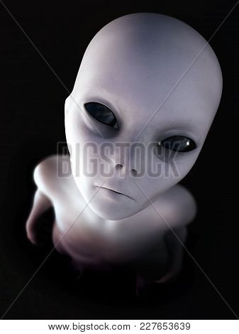 Portrait Of A Gray Alien Standing And Looking Up At You, 3d Rendering. Black Background.