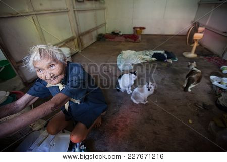 Bangkok, Thailand - December 3, 2007 : A Old Woman Live Alone With Her Cats In The Klong Toey Slum I