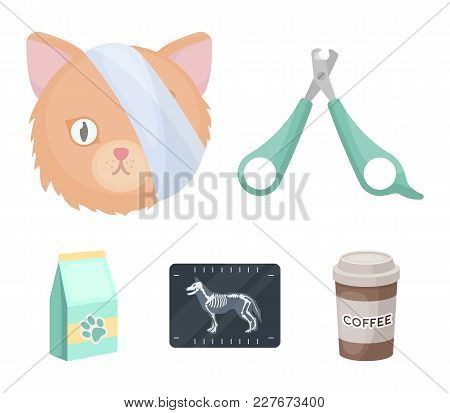 Scissors, Cat, Bandage, Wounded .vet Clinic Set Collection Icons In Cartoon Style Vector Symbol Stoc