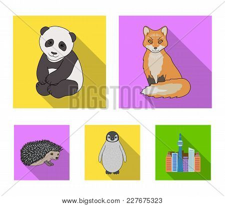 Fox, Panda, Hedgehog, Penguin And Other Animals.animals Set Collection Icons In Flat Style Vector Sy