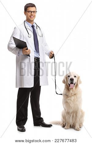 Full length portrait of a veterinarian with a labrador retriever dog isolated on white background