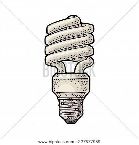 Energy Saving Spiral Cfl Lamp. Vector Vintage Color Engraving Illustration On White Background