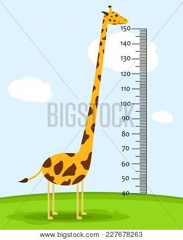 Meter Wall Or Baby Scale Of Growth With Giraffe On The Grass. Kids Height Chart. Scale From 40 To 15