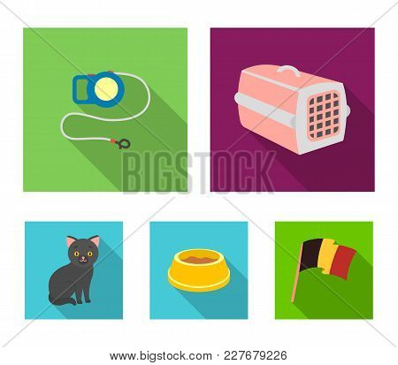 A Container For An Animal, A Roulette Leash, A Bowl Of Food, A Kitten.cat Set Collection Icons In Fl