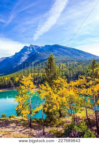 The Magnificent Lake Two Jack. The pure turquoise water of the lake reflects coniferous forests. Golden Autumn in Canada.  The concept of ecological and active tourism
