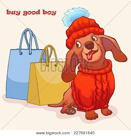 Funny Dachshund Sits In A Sweater Next To A Gift Bag. Cartoon Characters. Vector Illustration. Buy G