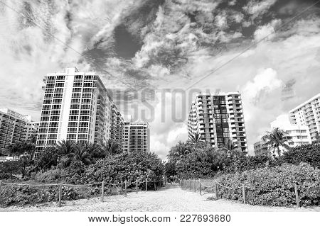 Miami Beach Or South Beach. Path Way From Tropical Beach With Green Palm Trees To High Rise, Apartme