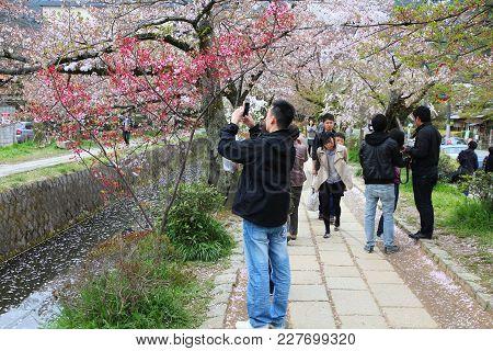 Kyoto Philosopher's Walk