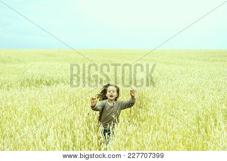 Happy Children On The Background Of Yellow Wheat Fields And Blue Sky
