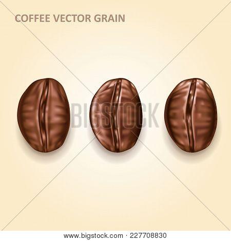 Round Coffee In Grains, Vector Realistic Design