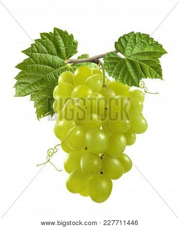 Bunch Of Green Grapes With Leaves Isolated On White Background As Package Design Element