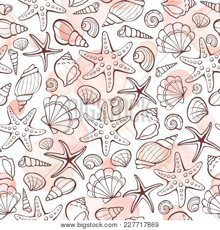 Marine Seamless Pattern From Hand Drawn Sea Shells And Stars. Nautical Illustration Of Shellfish Wit