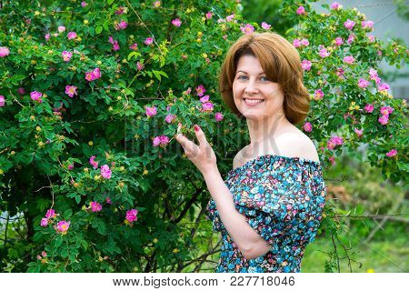 Smiling Woman Standing Near A Blossoming Dog Rose
