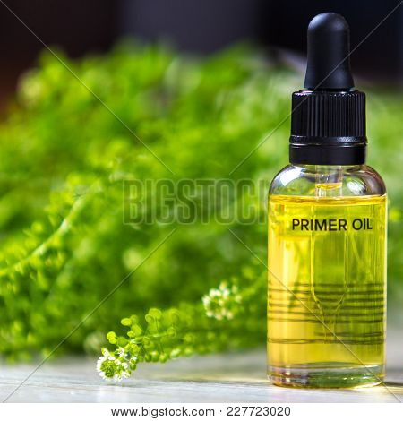 Bottle With Oil For Face. Cosmetic Means. Close-up Photo
