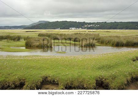 Dwyryd Estuary
