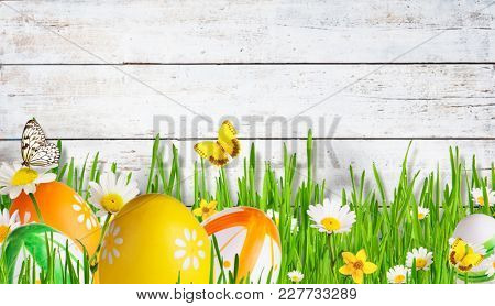 Idyllic spring meadow with Easter eggs and butterflies with old wooden planks on background. Spring concept with copyspace.
