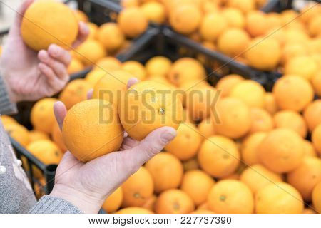 A Woman Chooses Oranges In A Store.