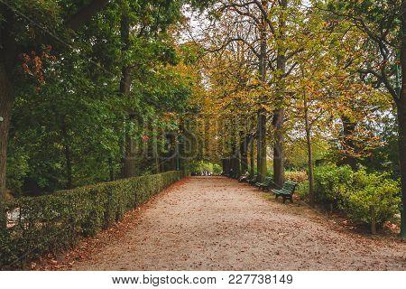 Thabor Gardens Alley
