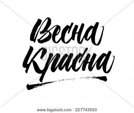 Welcome Hello Spring In Russian. Vector Isolated Inscription. Brush Pen Modern Trendy Lettering. On