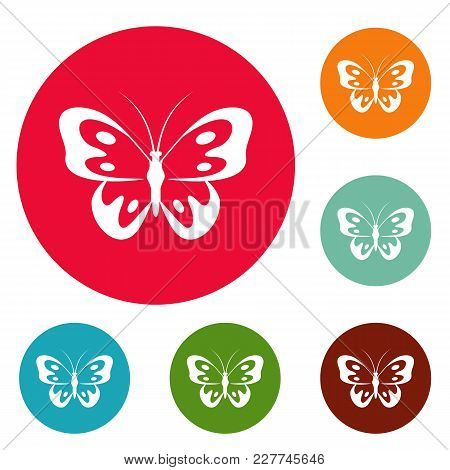 Butterfly In Wildlife Icons Circle Set Vector Isolated On White Background