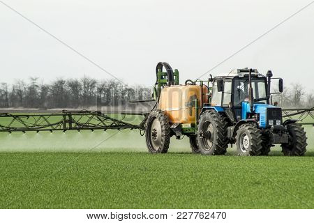 Tractor With High Wheels Is Making Fertilizer On Young Wheat. The Use Of Finely Dispersed Spray Chem