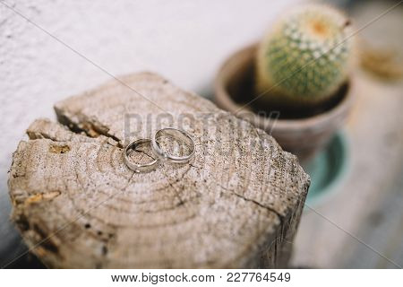 Wedding Rings On Wooden Background In Nature