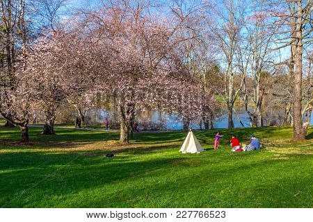 Holmdel, New Jersey - April 9, 2017: A Family Enjoys A Beautiful Spring Day In The Park On April 9 2