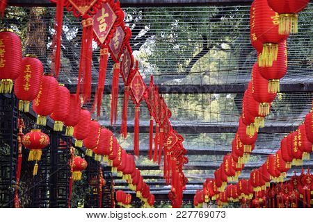 The Red Lanterns, Traditional Chinese Decoration, Suspended All Around The Park During Chinse New Ye