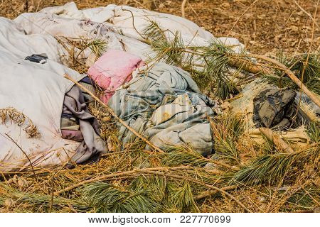 Pile of dirty old used discarded clothes covered with pine branches lying on the ground in wilderness poster