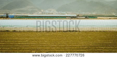 Landscape Of Field With Growing Houses Covered With Translucent Plastic With Small Community At Base